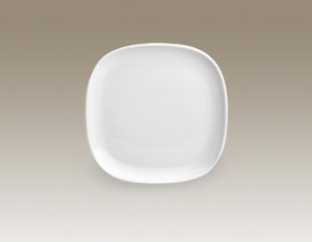 Square Plate 19